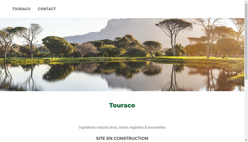 Capture d'écran du site de Touraco SARL