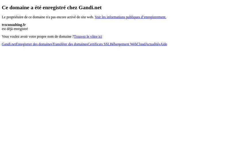 Capture d'écran du site de Tvs Consulting