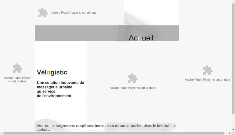 Capture d'écran du site de Velogistic