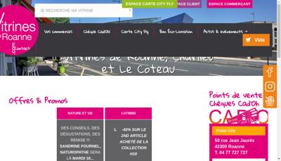 Capture d'écran du site de Les Vitrines de Roanne