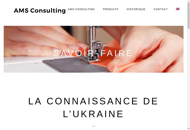 Capture d'écran du site de Ams Consulting