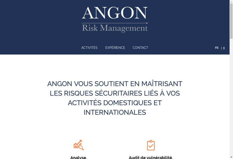Capture d'écran du site de Angon Risk Management