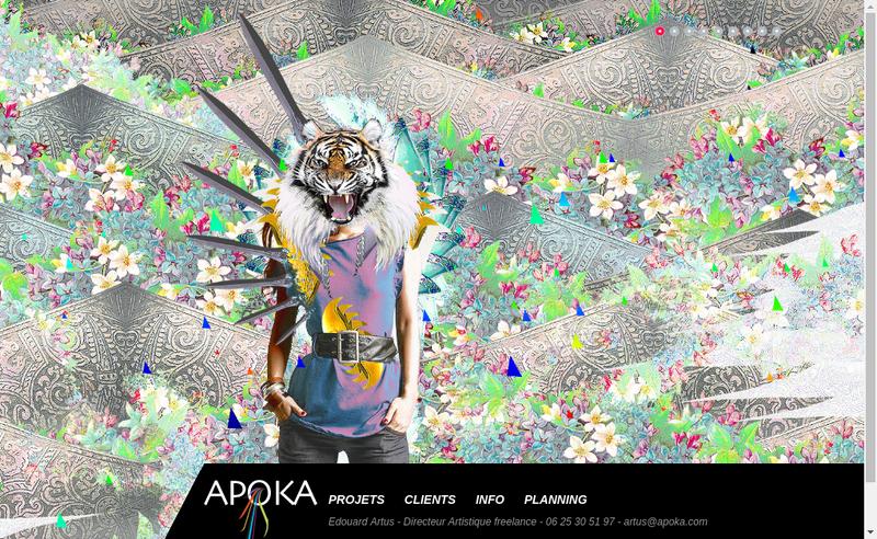 Capture d'écran du site de APOKA