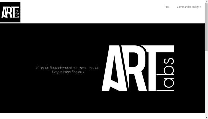 Capture d'écran du site de Artlabs