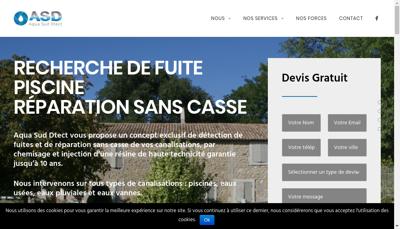 Capture d'écran du site de Renov Canalisation