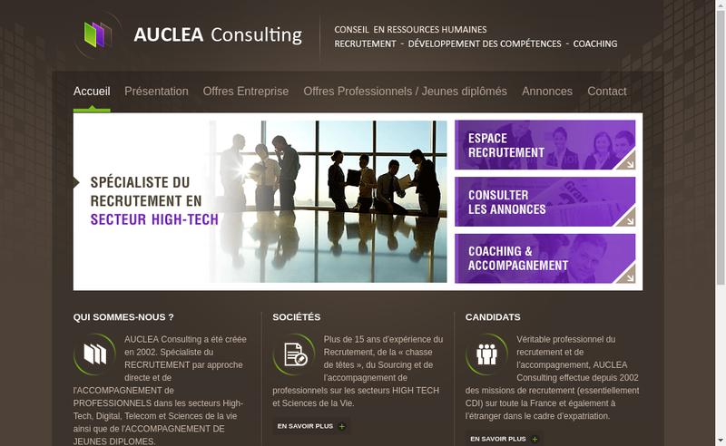 Capture d'écran du site de Auclea Consulting