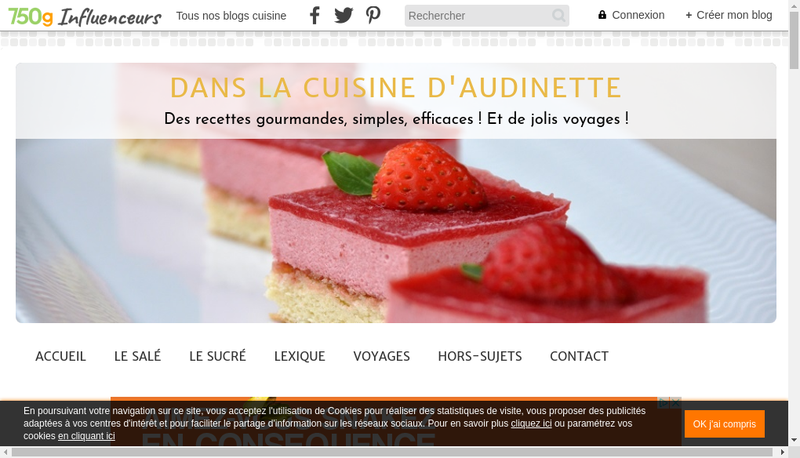 Capture d'écran du site de Audinette