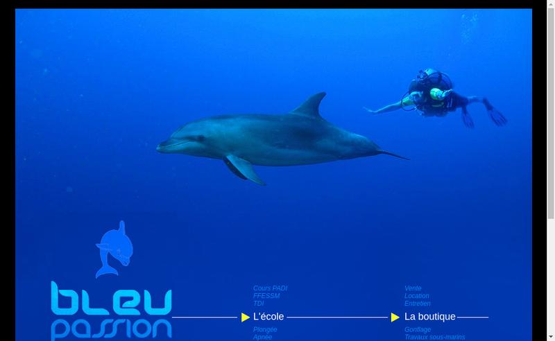 Capture d'écran du site de Bleu Passion