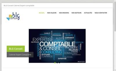 Site internet de Blg Conseil