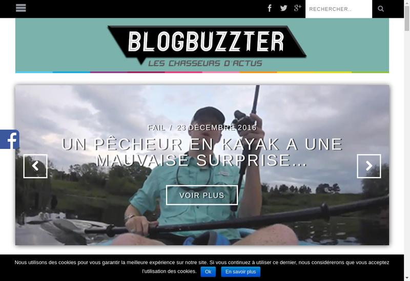 Capture d'écran du site de Belinks