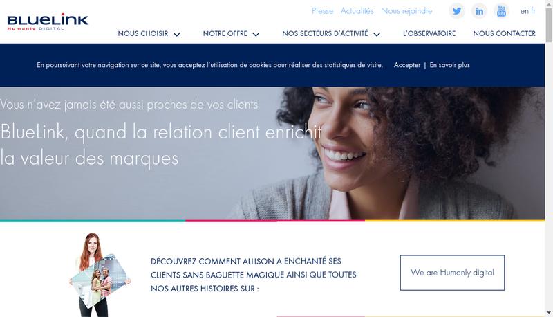 Capture d'écran du site de Bluelink