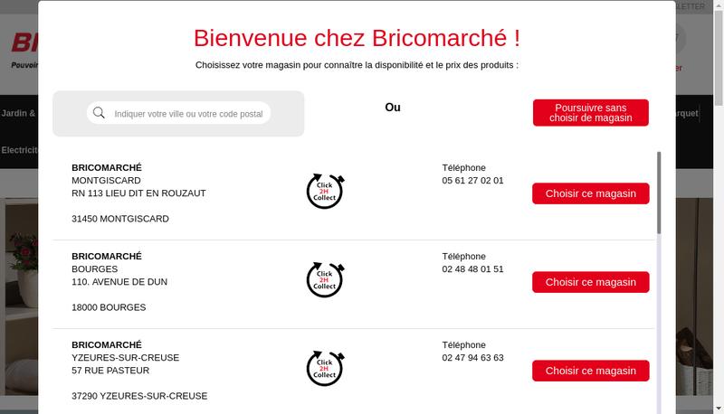 Capture d'écran du site de Bricomarche