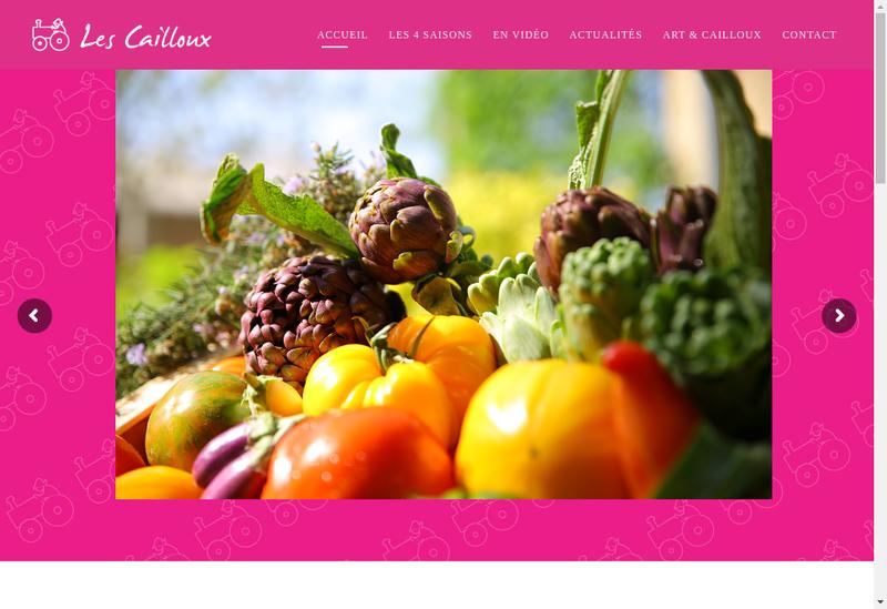 Capture d'écran du site de Les Petits Cailloux