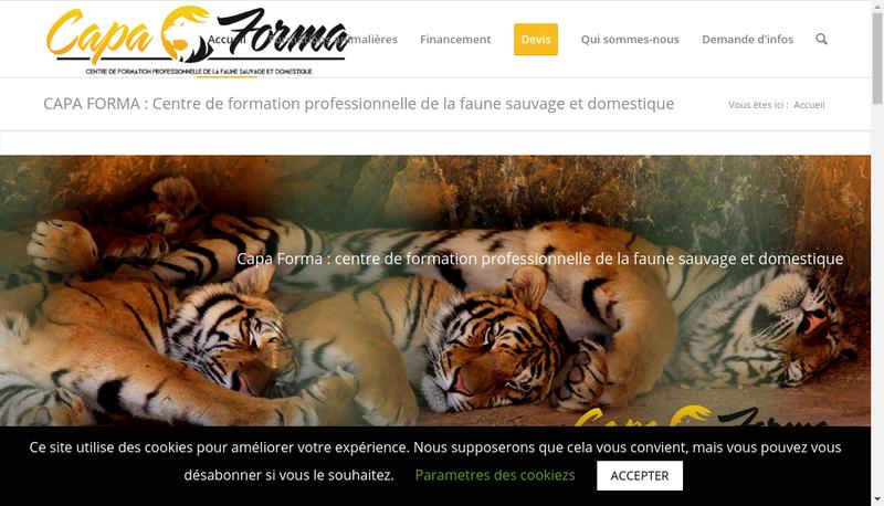 Capture d'écran du site de Capa Forma