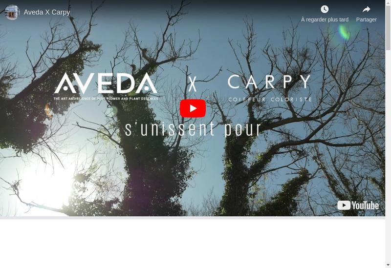 Capture d'écran du site de Carpy