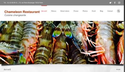 Capture d'écran du site de Chameleon