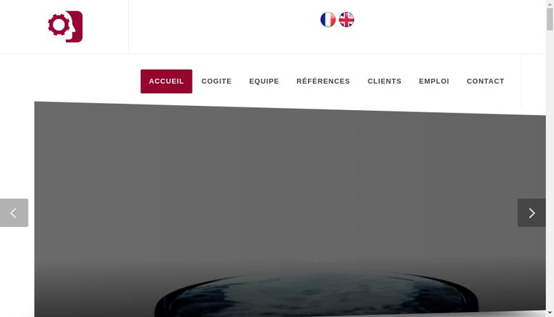 Capture d'écran du site de Cogite