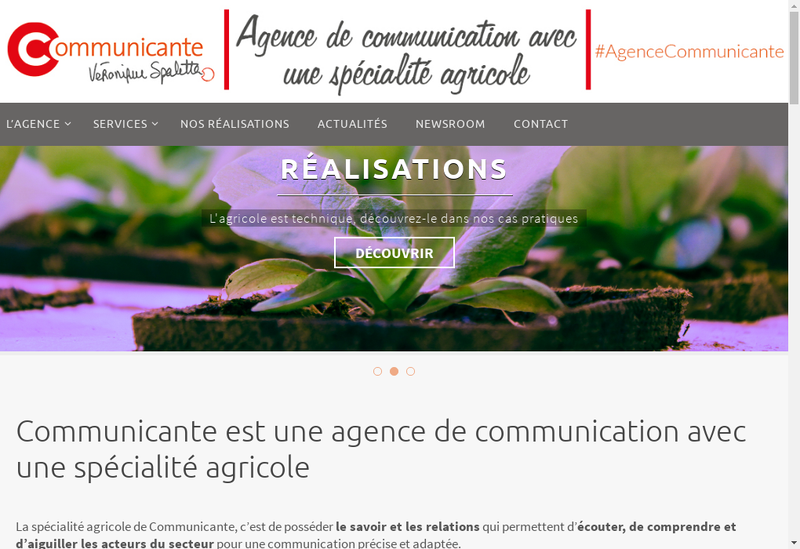 Capture d'écran du site de Communicante