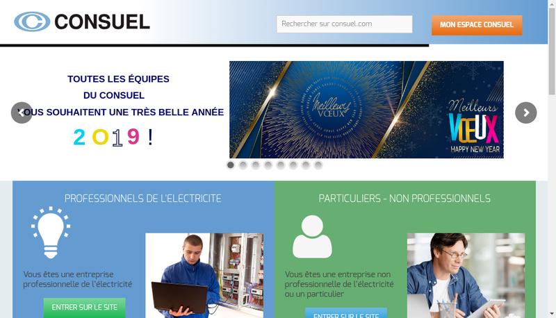 Capture d'écran du site de Consuel Paris