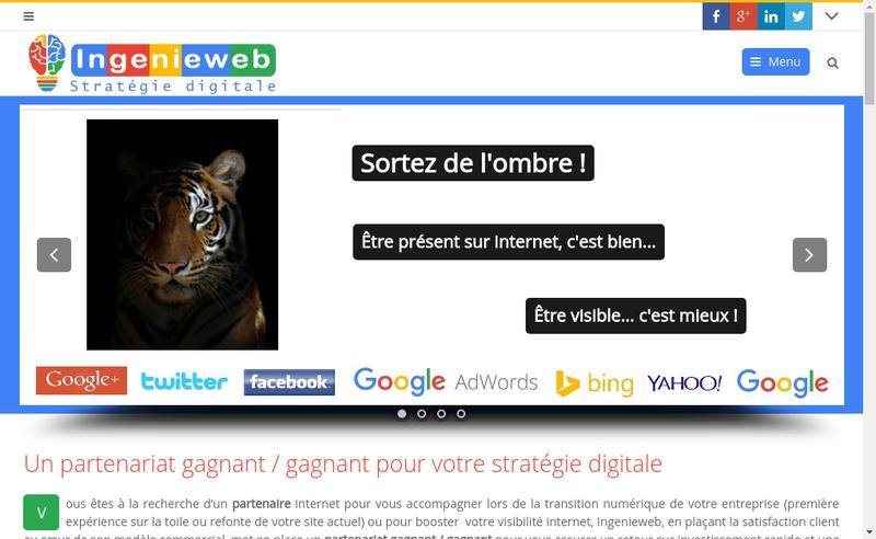 Capture d'écran du site de Olivier Delpy