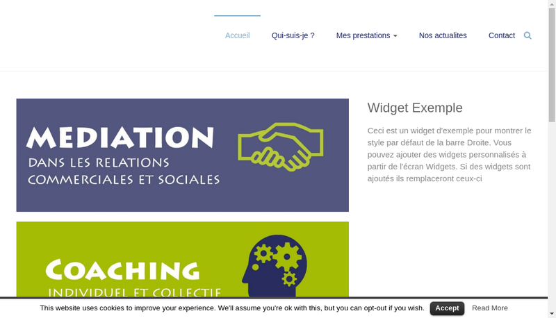 Capture d'écran du site de Denis Hurstel Conseils