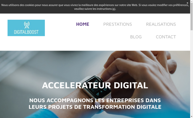 Capture d'écran du site de Digitalboost