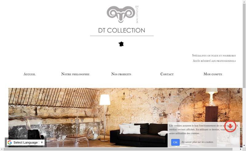 Capture d'écran du site de Dt Collection