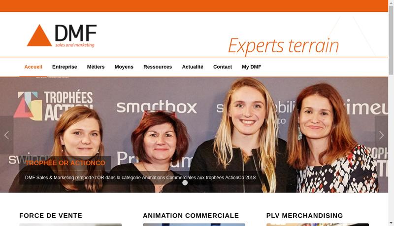 Capture d'écran du site de DMF Sales & Marketing