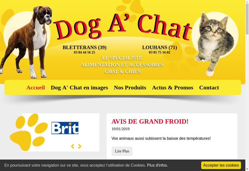 Capture d'écran du site de Dog A' Chat