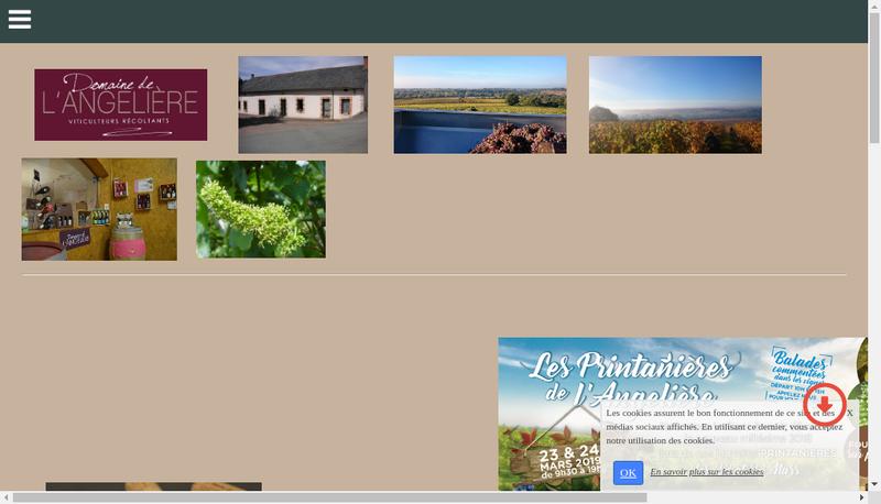 Capture d'écran du site de Boret