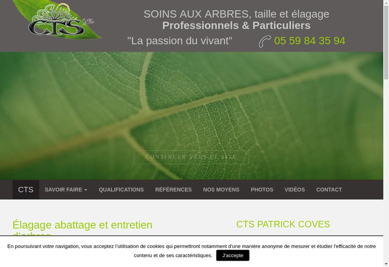 Capture d'écran du site de CTS