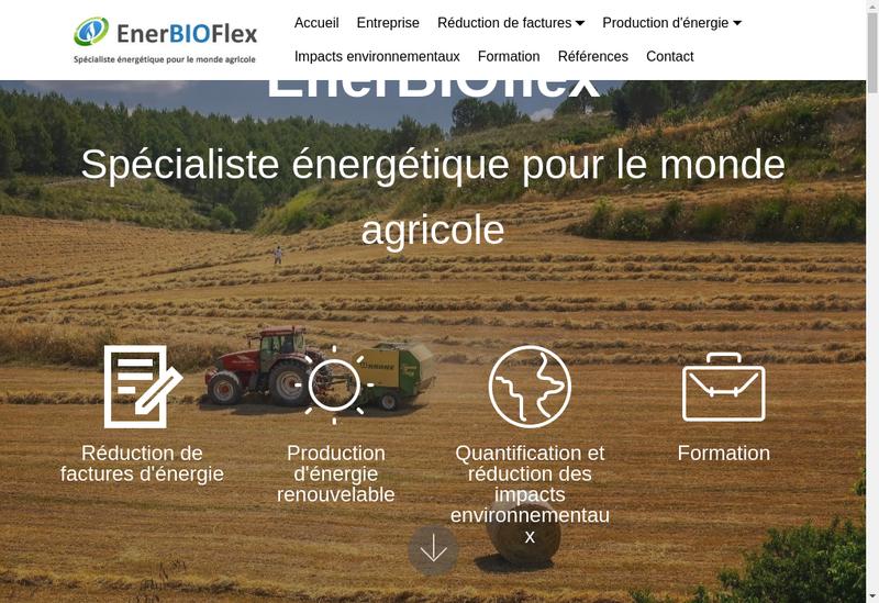 Capture d'écran du site de Enerbioflex