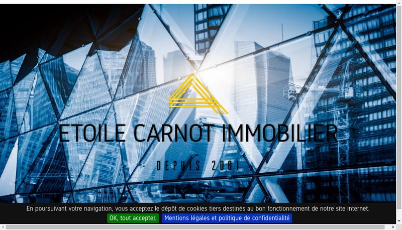 Capture d'écran du site de Etoile Carnot Immobilier