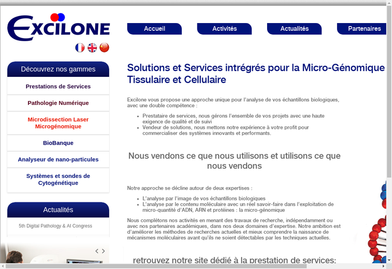 Capture d'écran du site de Excilone