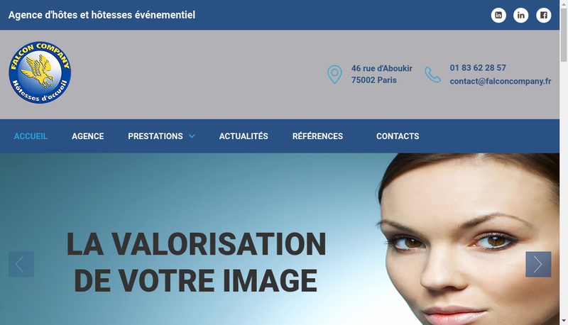 Capture d'écran du site de Falcon Company