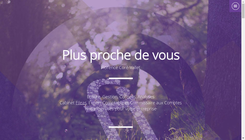 Capture d'écran du site de Fileas