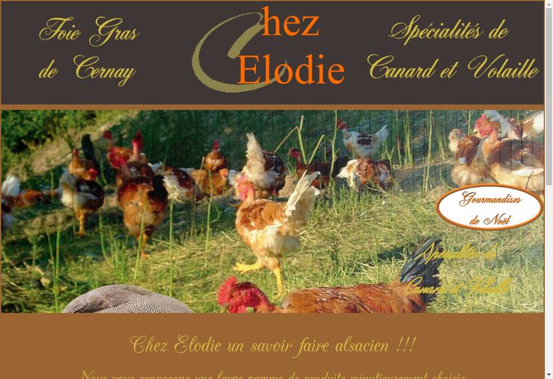 Capture d'écran du site de Chez Elodie