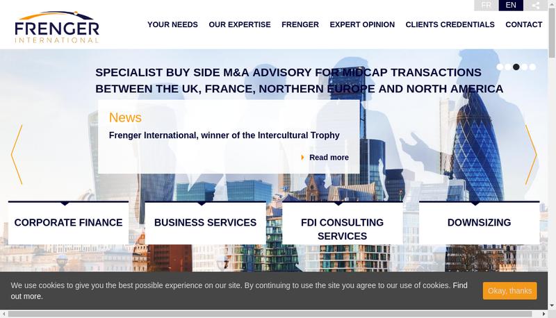 Capture d'écran du site de Frenger SAS