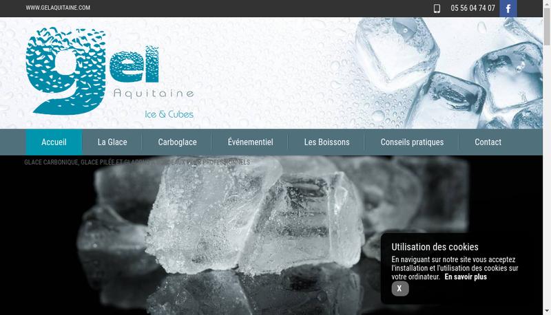 Capture d'écran du site de Gelaquitaine
