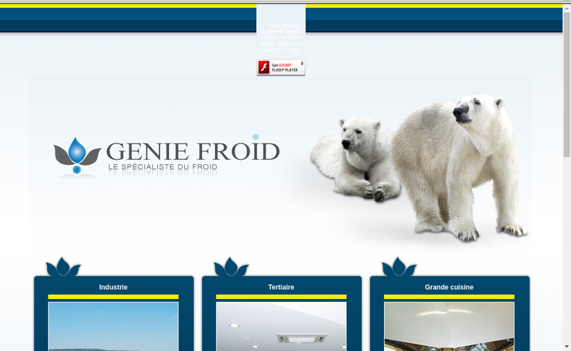 Capture d'écran du site de Genie Froid