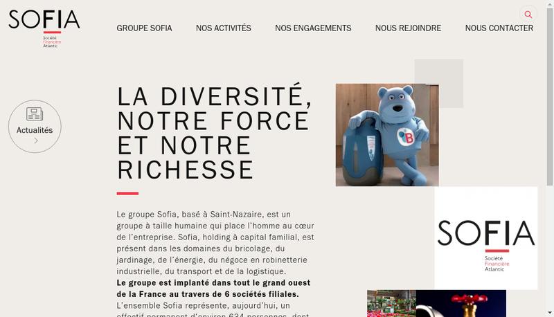 Capture d'écran du site de Bricoland
