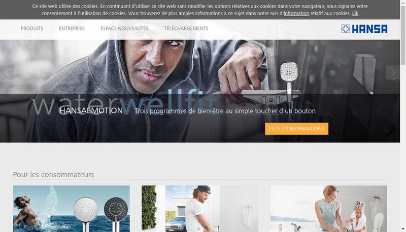 Capture d'écran du site de Hansa France