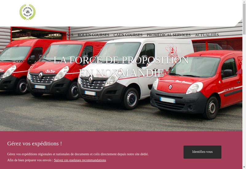 Capture d'écran du site de Pro Medical Services