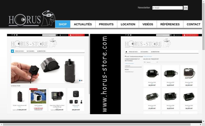 Capture d'écran du site de Horus SARL