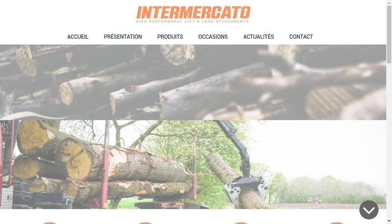 Capture d'écran du site de Intermercato France