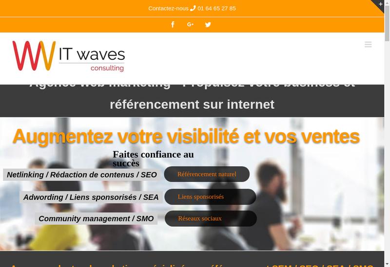 Capture d'écran du site de It Waves Consulting