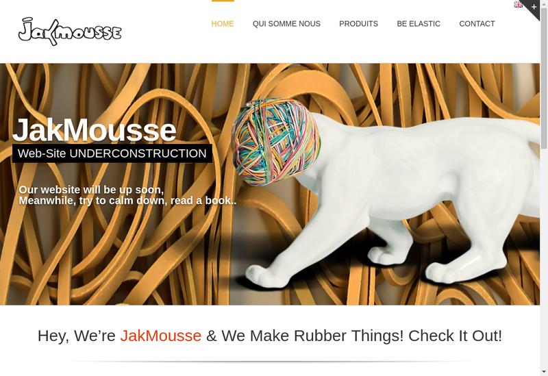 Capture d'écran du site de Reivax