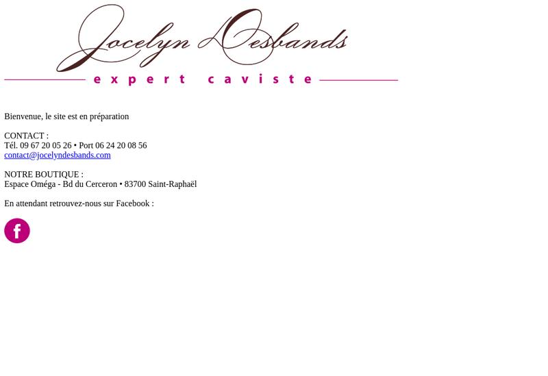 Capture d'écran du site de Jocelyn Desbands