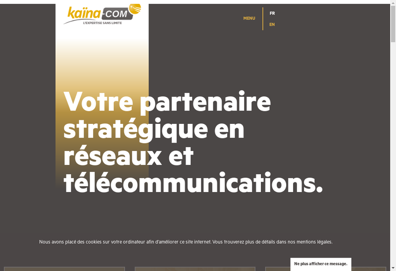 Capture d'écran du site de Kaina Com
