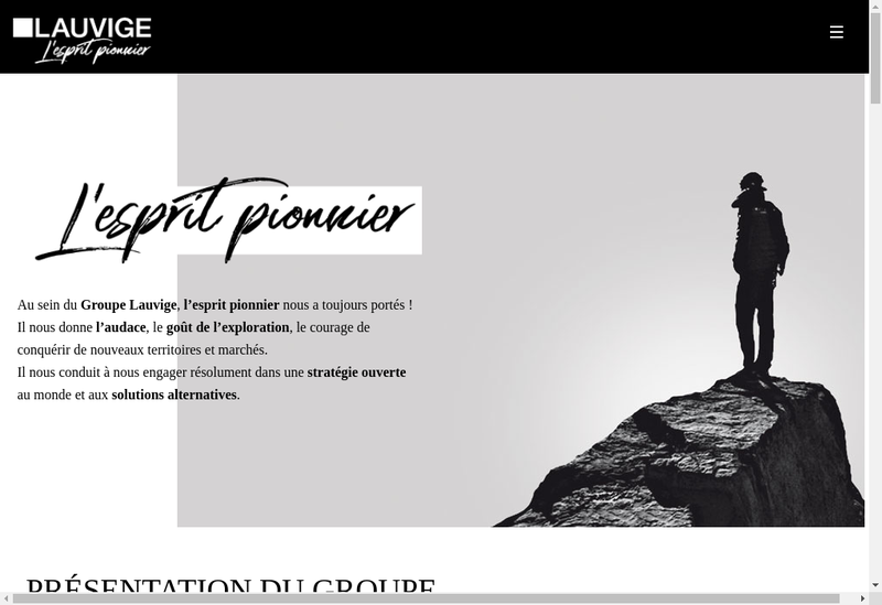 Capture d'écran du site de Lauvige Emballage